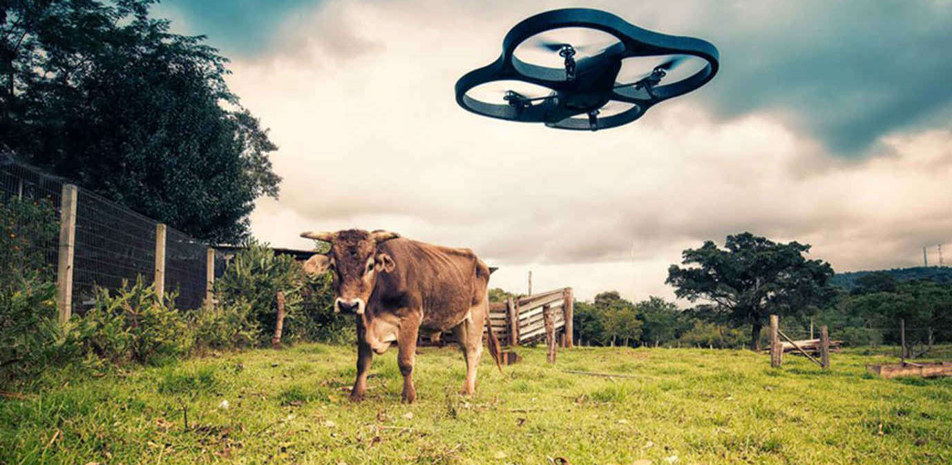 The global race for drone regulation